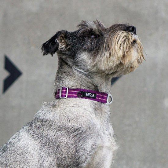 Urban Style Collar(小型-大型犬用首輪)