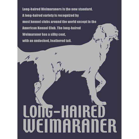 ワイマラナー(ロングヘアード)ステッカー