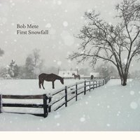 Bob Mete / First Snowfall