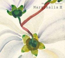 高木正勝 / Marginalia III
