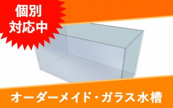 オーダーガラス水槽 W550×D190×H150�(グラスサポート付き)