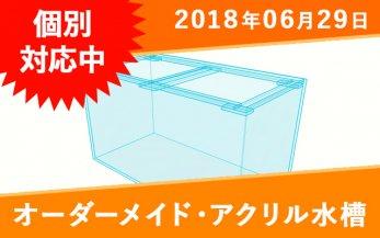 オーダーメイド アクリル水槽 W900(940)×D60(内寸)×H600mm