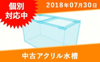 <img class='new_mark_img1' src='https://img.shop-pro.jp/img/new/icons15.gif' style='border:none;display:inline;margin:0px;padding:0px;width:auto;' />【個別対応中】中古オーバーフローアクリル水槽 W1200×D450×H500mm