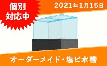 オーダーメイド 塩ビ水槽 W600×D250×H300mm 板厚5mm