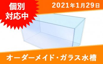 オーダーメイド ガラス水槽 W600×D500×H500mm 板厚10mm OF式(3重管) リブあり