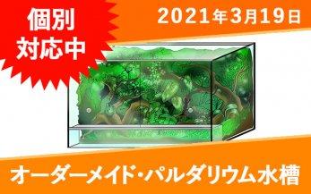 オーダーメイド パルダリウム水槽(ガラス) W900×D450×H500mm 板厚6mm