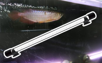 W1500�アロワナ水槽用 水中LED照明