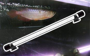 W1800�アロワナ水槽用 水中LED照明
