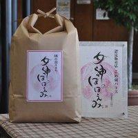 令和2年産 奇跡のお米 女神のほほえみ 5�