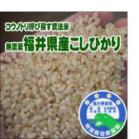 無農薬・無化学肥料<BR>コウノトリ呼び戻す農法米<BR>平成25年産福井県産こしひかり