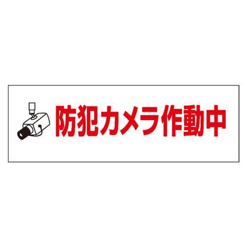 SN41B 防犯カメラ作動中
