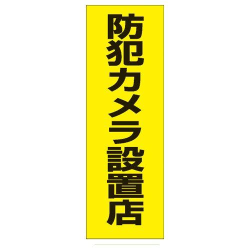 YN36B 防犯カメラ設置店