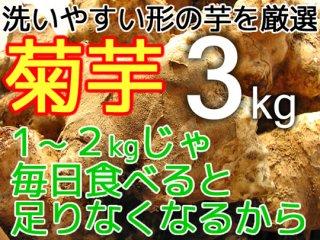 生の菊芋 3kg <神奈川県産>