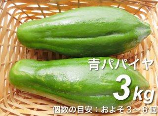 青パパイヤ 3kg <神奈川県産>