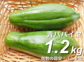 青パパイヤ 1.2kg <神奈川県産>