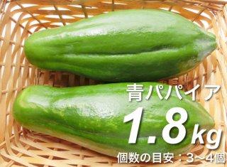 青パパイヤ 1.8kg <神奈川県産>