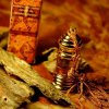 ホワイトムスク・ガゼル・アニマリック3ml 天然香油