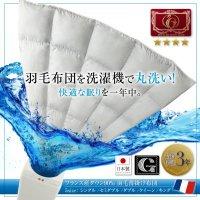 洗濯機で洗える エクセルゴールドラベル フランス産ダウン90% 羽毛薄掛け布団 Wash ウォッシュ 羽毛布団