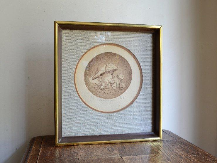 木製フレーム ボタニカルアート (版画)