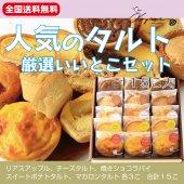 【送料無料】おすすめタルト15【店内売れ筋タルトベスト5】