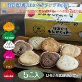 【いろいろ味を選べる】はまぐりもなかくっきー5個入【かわいいウミネッコーの箱】