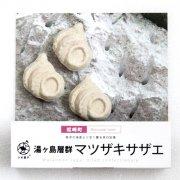 化石 マツザキサザエ干菓子