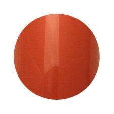 Putiel(プティール) カラージェル 3gA26 アースオレンジ