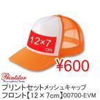 激安プリントセット600円(税抜) メッシュキャップ【12×7cm】 00700-EVM