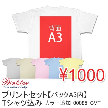 激安プリントセット【バックA3内】Tシャツボディカラー追加 1000円(税抜) 00085-CVT