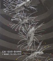 蔡國強 Cai Guo-Qiang: I Want to Believe