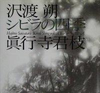 シビラの四季 沢渡朔・真行寺君枝