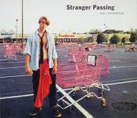 Joel Sternfeld: Stranger Passing ジョエル・スターンフェルド