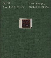 杉戸洋 とんぼ と のりしろ Hiroshi Sugito module or lacuna