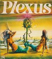 Plexus プレクサス No.24
