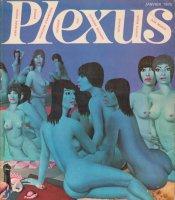 Plexus プレクサス No.31