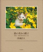 猫の麦わら帽子 The Strawhat Cat 深瀬昌久