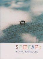 種を蒔く Semear 川内倫子写真集