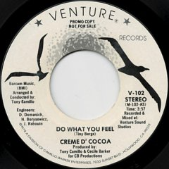 Do What You Feel (stereo) / (mono)