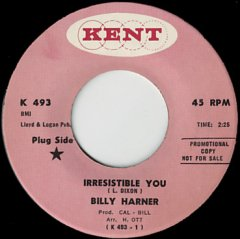 Irresistible You / Honky Dory