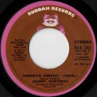 Nobody's Perfect (stereo) / (mono)