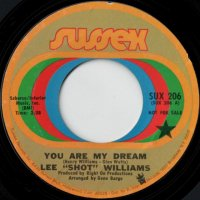 You Are My Dream / I Feel An Urge Comin' On