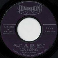 Softly In The Nights / Don't Say Nothin' bad