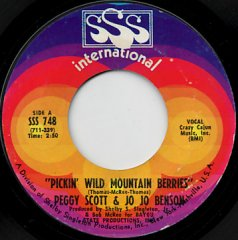 Pickin' Wild Mountain Berries / Pure Love And Pleasure