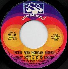 Pickin' Wild Mountain Berries / Pure Love And Pleasure