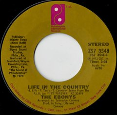Life In The Country / Hook Up And Get Down