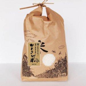 【29年度新米】無農薬米 かもさん米 玄米 5キロ