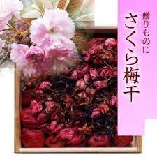 ◆ギフト 香り豊かな吉野の桜を散りばめました◆南高さくら梅干(杉箱入り)【500g】