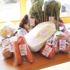 有機野菜セット9〜12品目 詰合せ便(大)⇒内容はここをクリック
