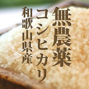 米!無農薬 こしひかり 白米 2キロ 28年度和歌山県産