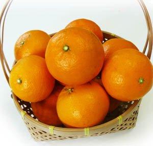 わけありカラーマンダリン 1kg袋 濃厚柑橘 ぶさいくですが濃厚!